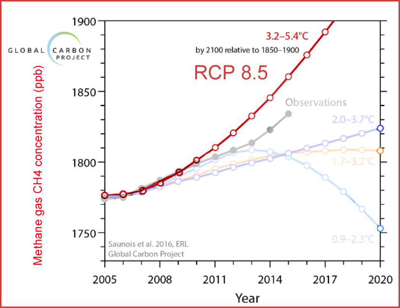 Global Carbon 8_5_en